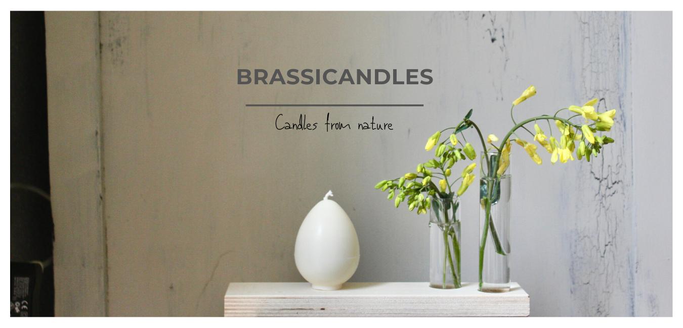 Brassicandles ei bloem